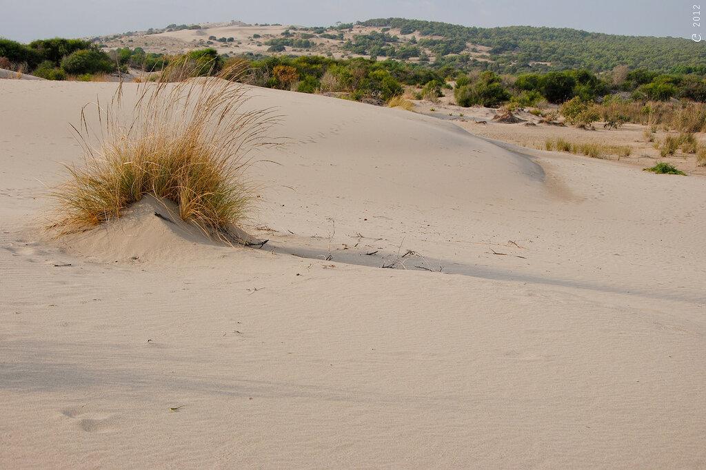 patara dunes