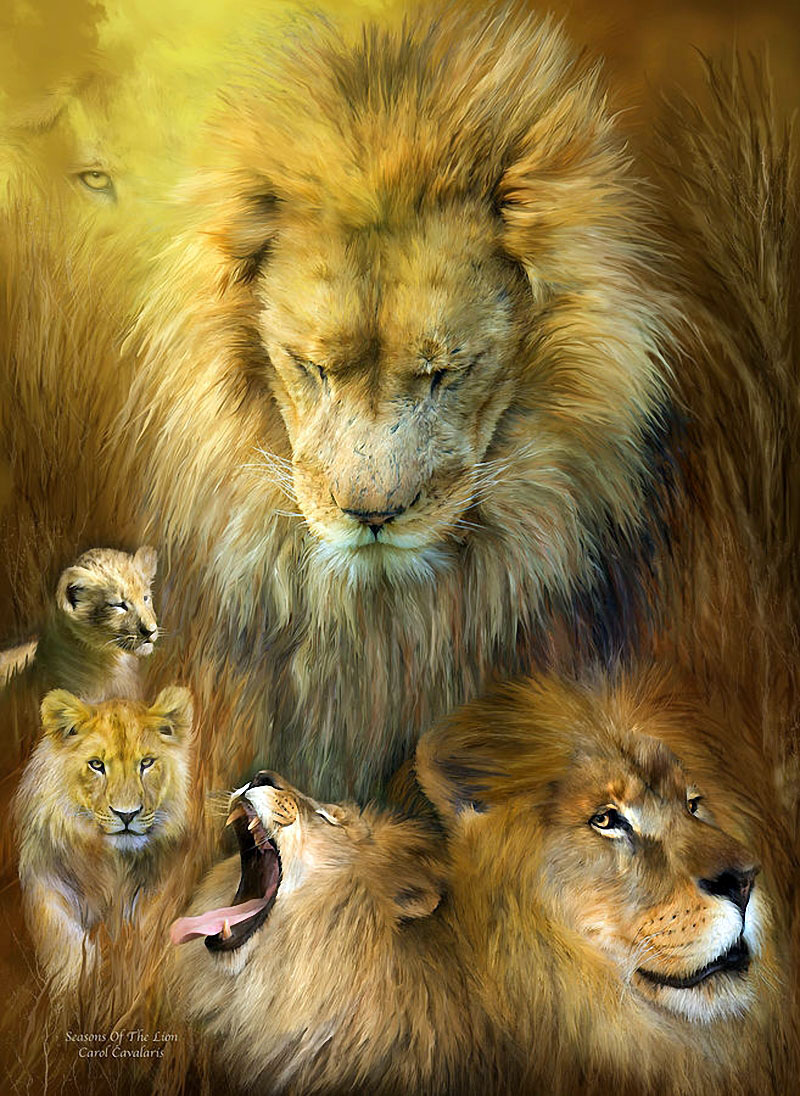 год тигра под знаком лев