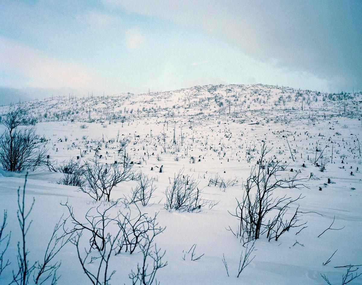 «Полярные ночи»: зимний Мурманск на снимках Саймона Робертса