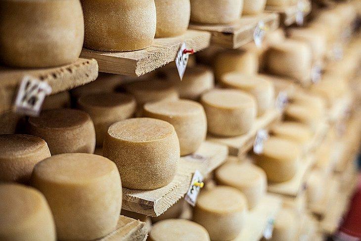 Экскурсия на сыроварню (24 фото)