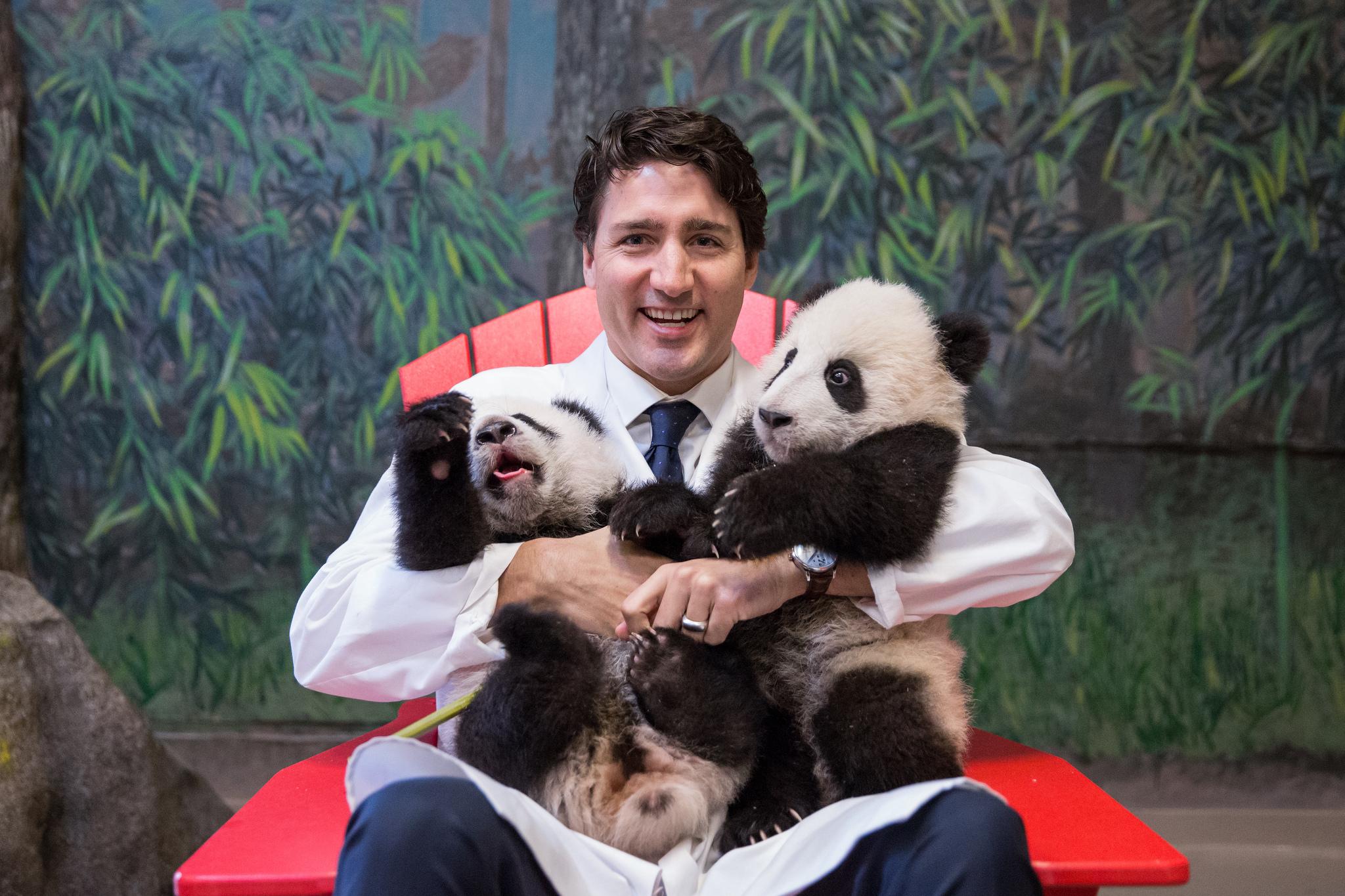 полиция человек что делать странное ответы почему Канада как лучше не делать