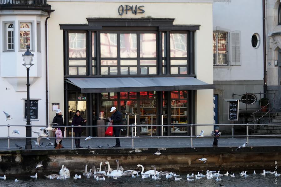 Luzern_Swiss15.JPG