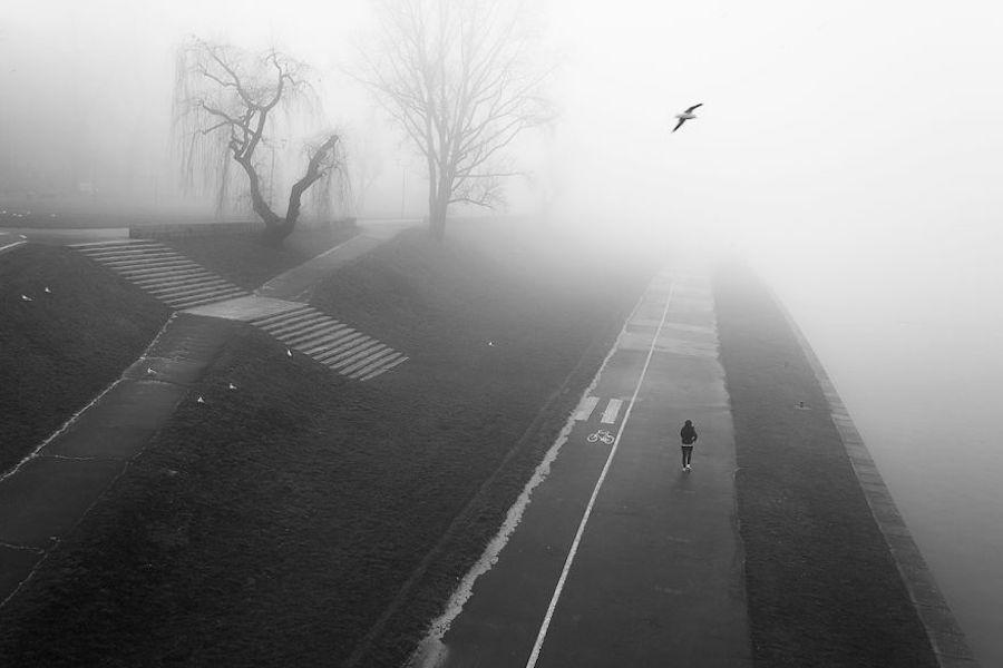 Morning Fog In Cracovie