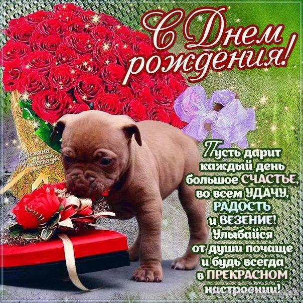 поздравление с днем рождения собаке стих девушка