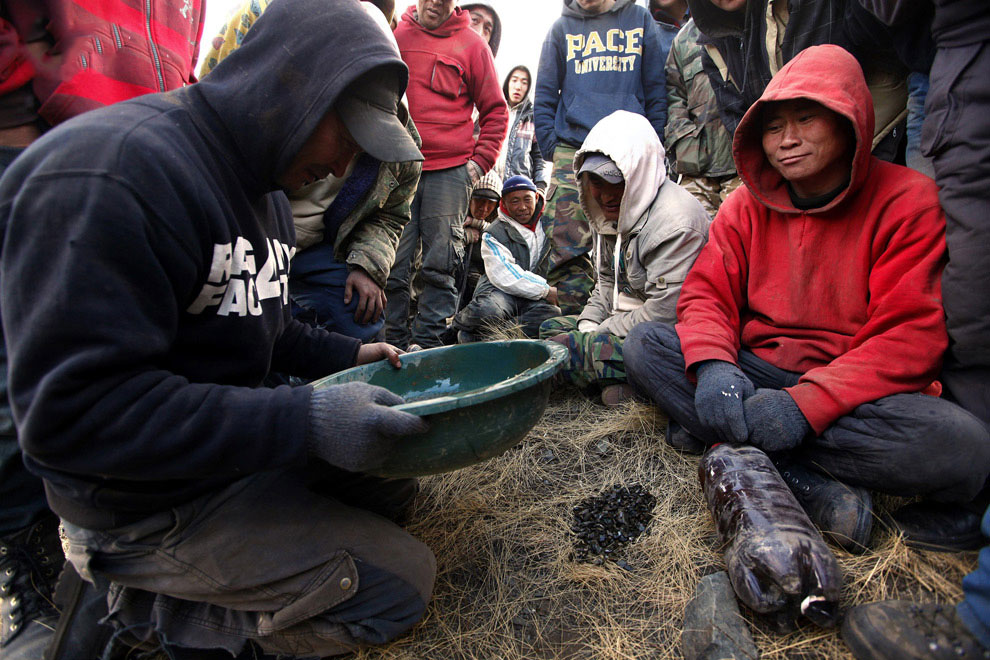 золото Монголия работа технология