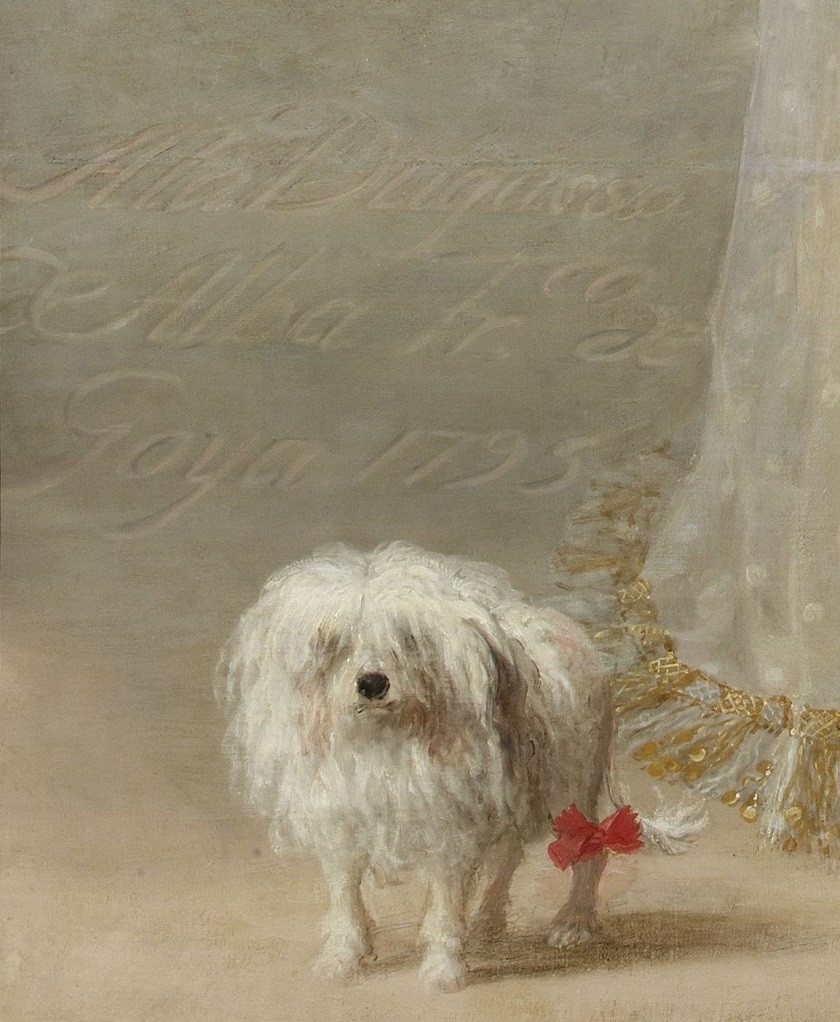 Goya_Alba1,_Detail.jpg