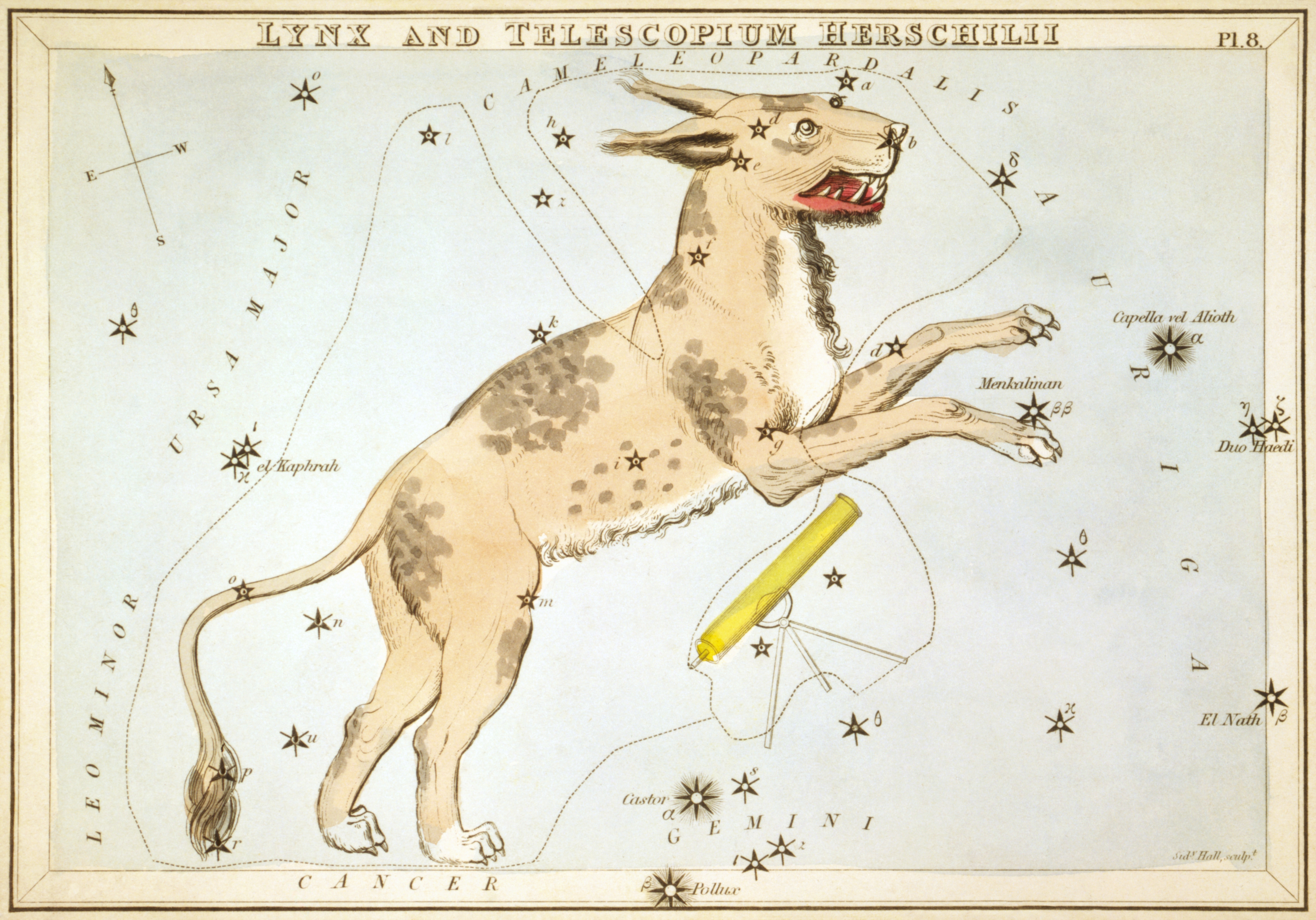 Карточка №8: Рысь и Телескоп Гершеля