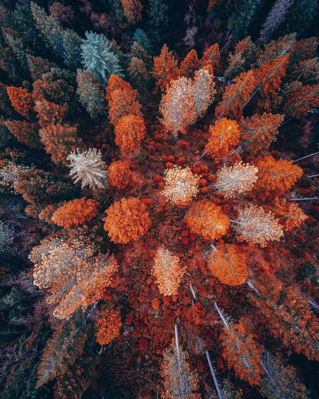 Замечательные аэрофотоснимки Ниаза Уддина людей, чтобы, вертолёта, самого, Уддин, вдохновить, высоты, цветовая, необычная, палитра, такая, —осознанный, выбор, является, отражением, собственного, поскольку, признанию, визитной, карточкой