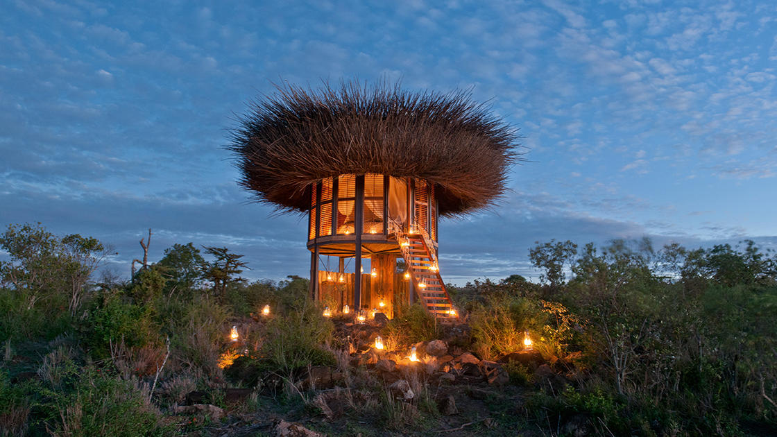 Sleeping in a cozy bird nest in the heart of African nature (8 pics)
