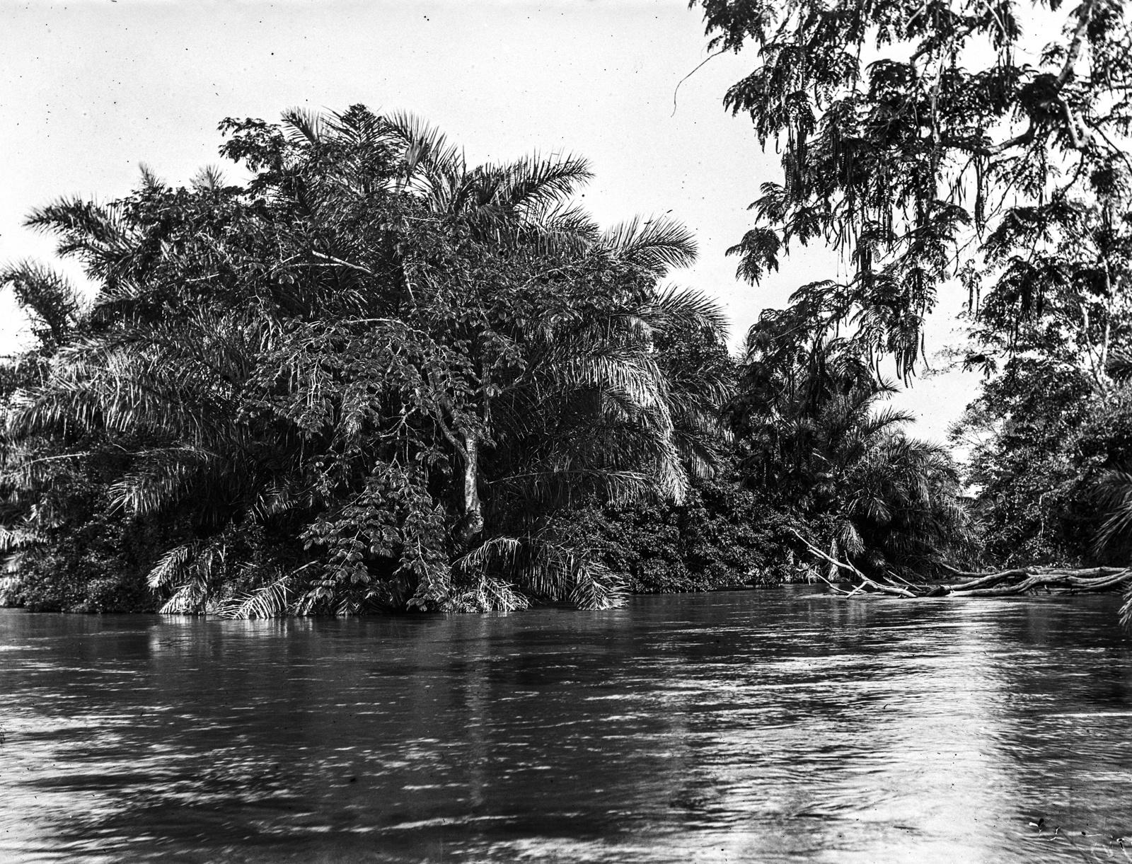 116. Река Руву