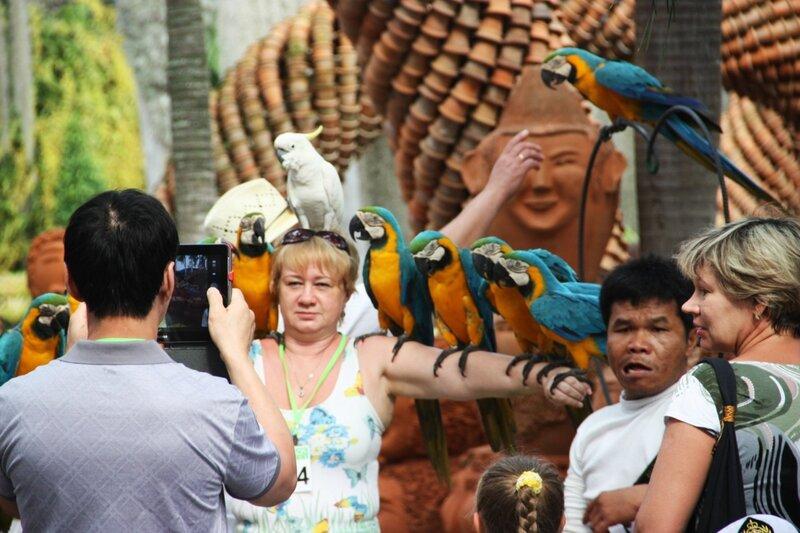 Нонг Нуч, паттайя, попугаи