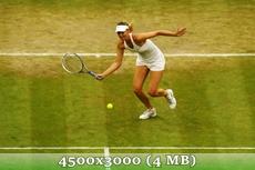 http://img-fotki.yandex.ru/get/9648/14186792.3b/0_d97c0_1fc8f971_orig.jpg