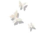 sussieM Welcome my Little Bear Butterflies sh.png
