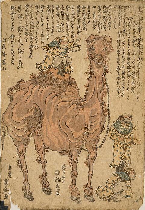 0УКуниясу Верблюд 1824.jpg