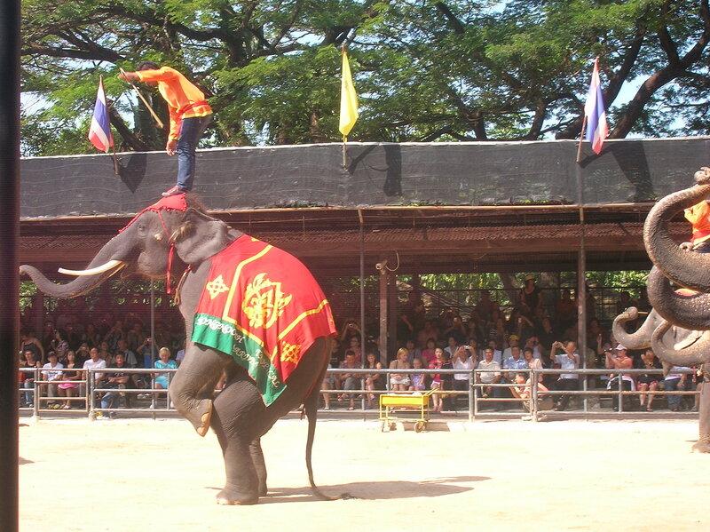Таиланд, Нонг Нуч - шоу слонов (Thailand, Nong Nooch - Elephant show)