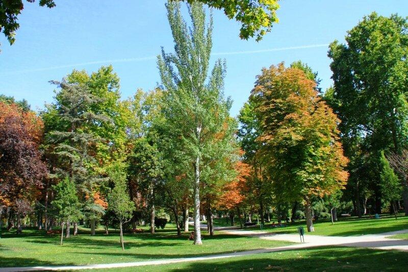 Мадрид, парк Ретиро (Madrid, Parque del Retiro)