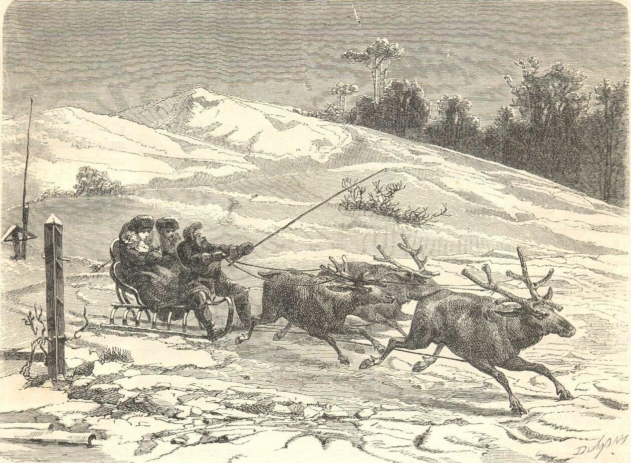 1862. Сибирь. Оленья упряжка
