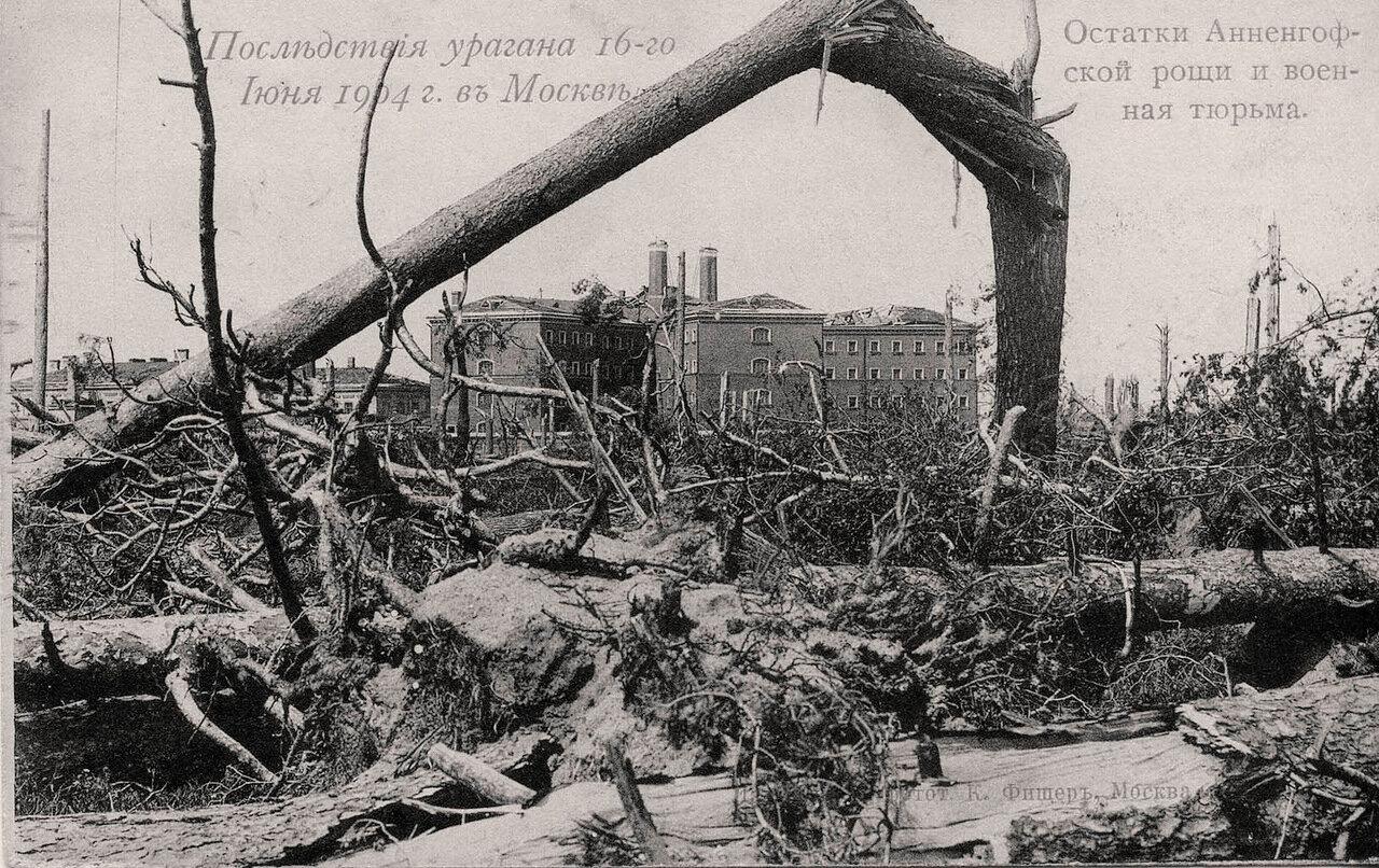 Последствия урагана 16 июня 1904 г. Остатки Анненгофской рощи и военная тюрьма