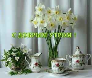 https://img-fotki.yandex.ru/get/964814/131884990.e5/0_15d270_16869eb_M.jpg