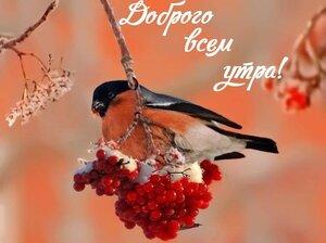 https://img-fotki.yandex.ru/get/964814/131884990.ed/0_1602e4_98afada_M.jpg