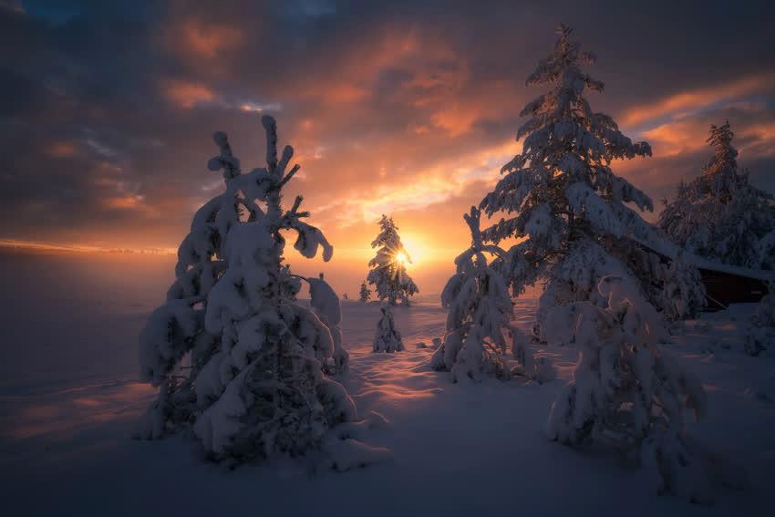 Зима на рабочий стол