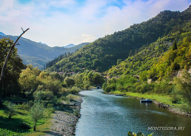 Спокойная река в Риеке Црноевича