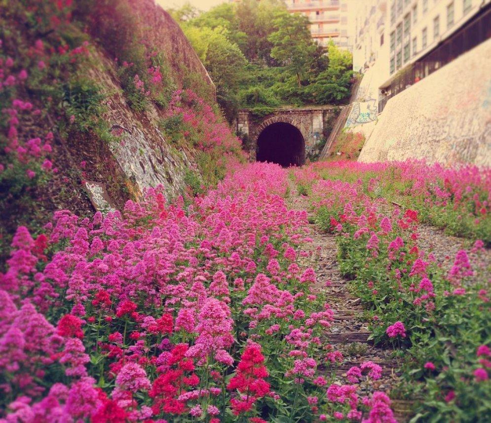 Эта железная дорога была построена в пределах парижских укреплений в 1852 году.