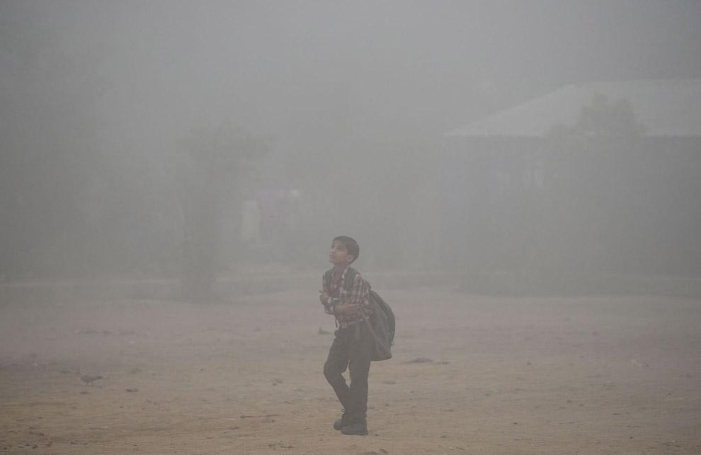 10. Мода Нью-Дели этих дней. (Фото Saumya Khandelwal | Reuters):