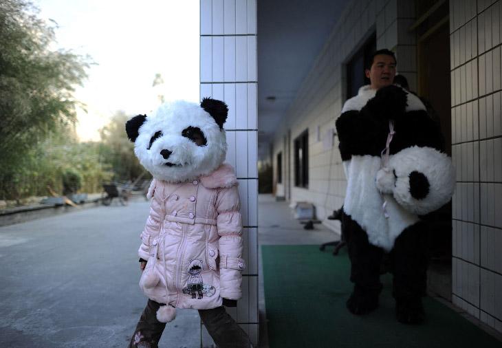 2. Пришел проверить сон. (Фото China Photos):