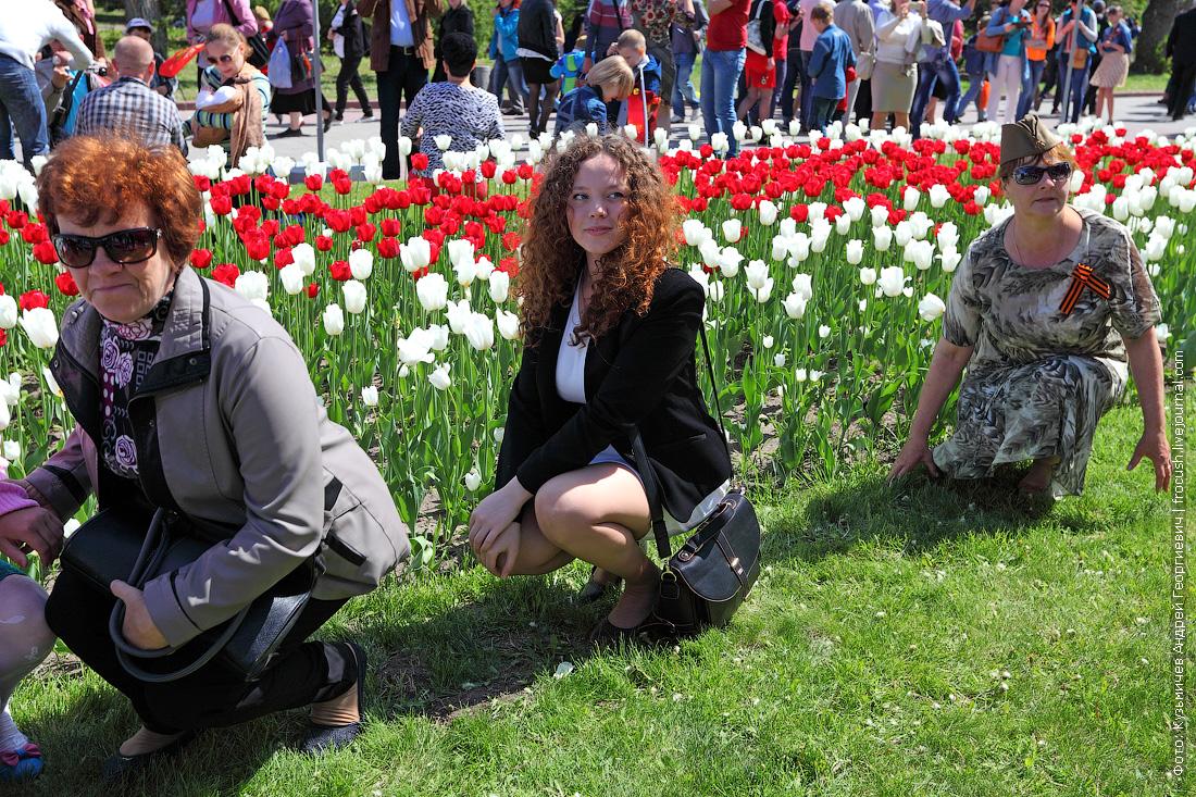 Жители Волгограда любят фотографироваться на фоне тюльпанов
