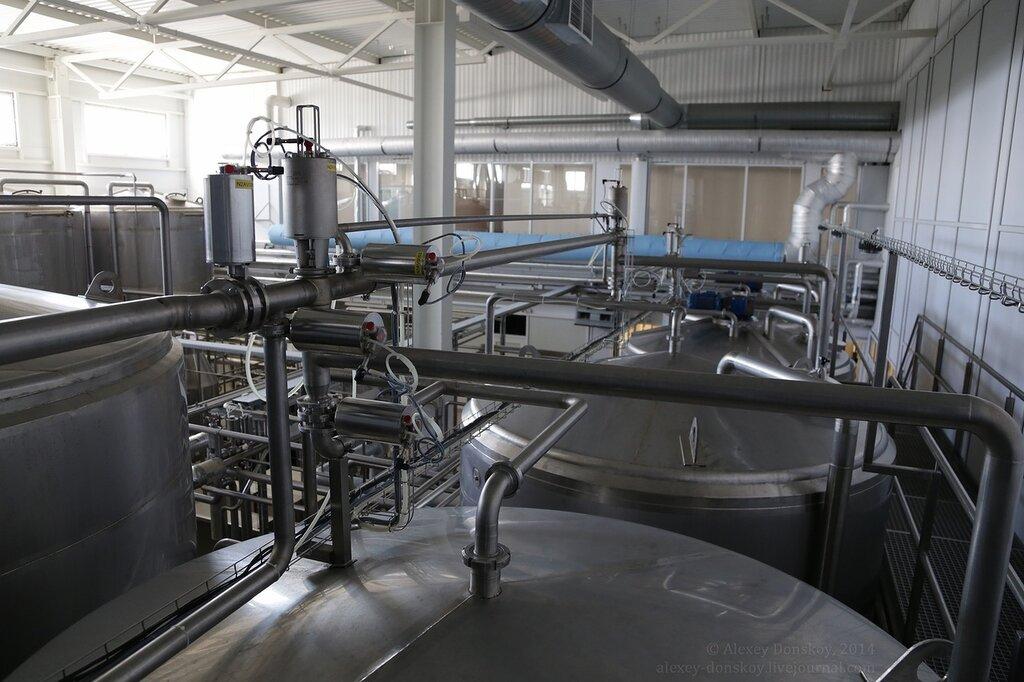 фотографии ядринского молочного завода заводах