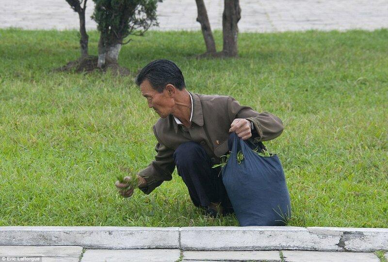 Житель Северной Кореи