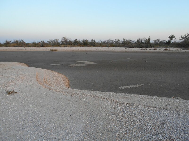 На песках ... DSCN0813.JPG