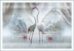 Proud Flamingo.png