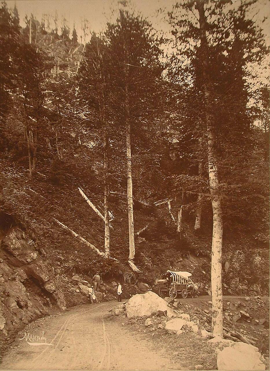 Груженная повозка и путники на горной дороге, ведущей через Зекарский перевал
