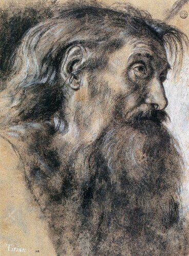 Giovanni_Gerolamo_Savoldo_-_Head_of_St_Jerome_-_WGA20906.jpg