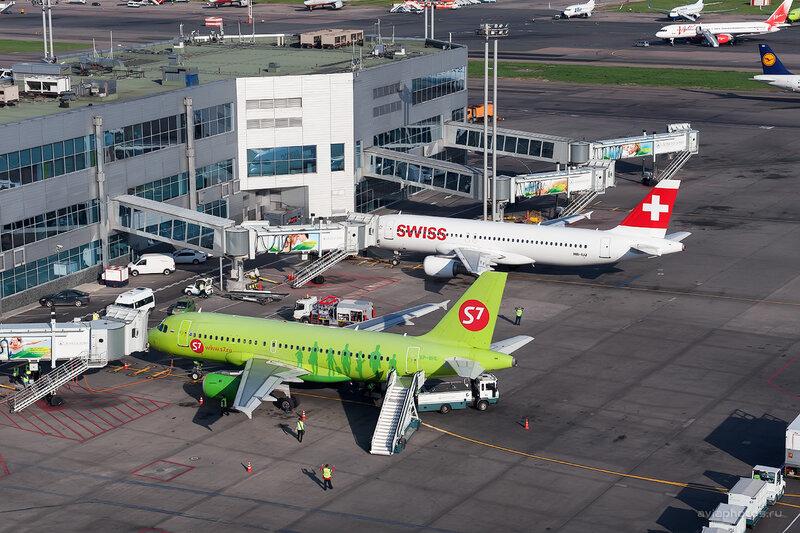 Airbus A319-114 (VP-BHL) S7 D708645