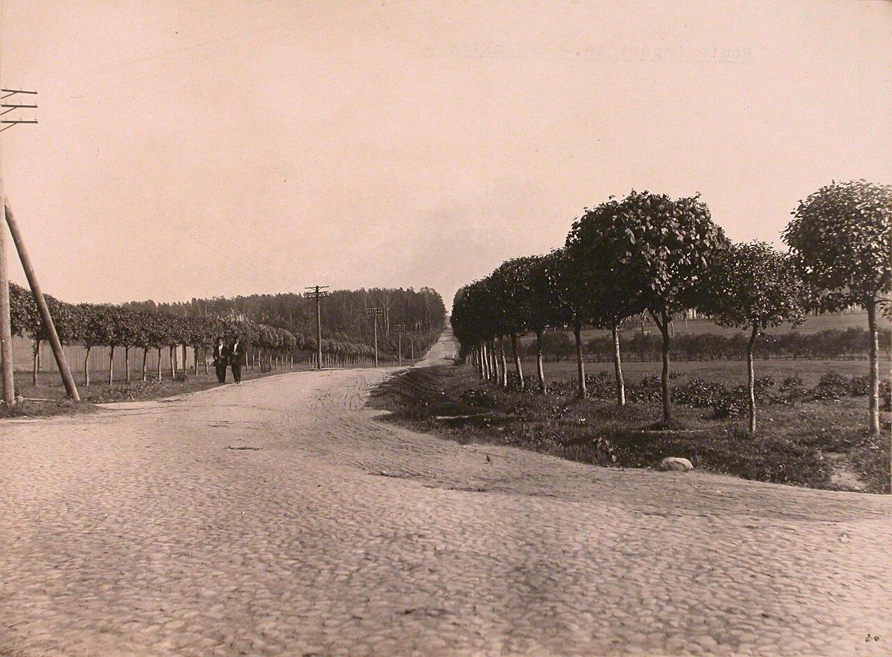 Вид на Царскую дорогу