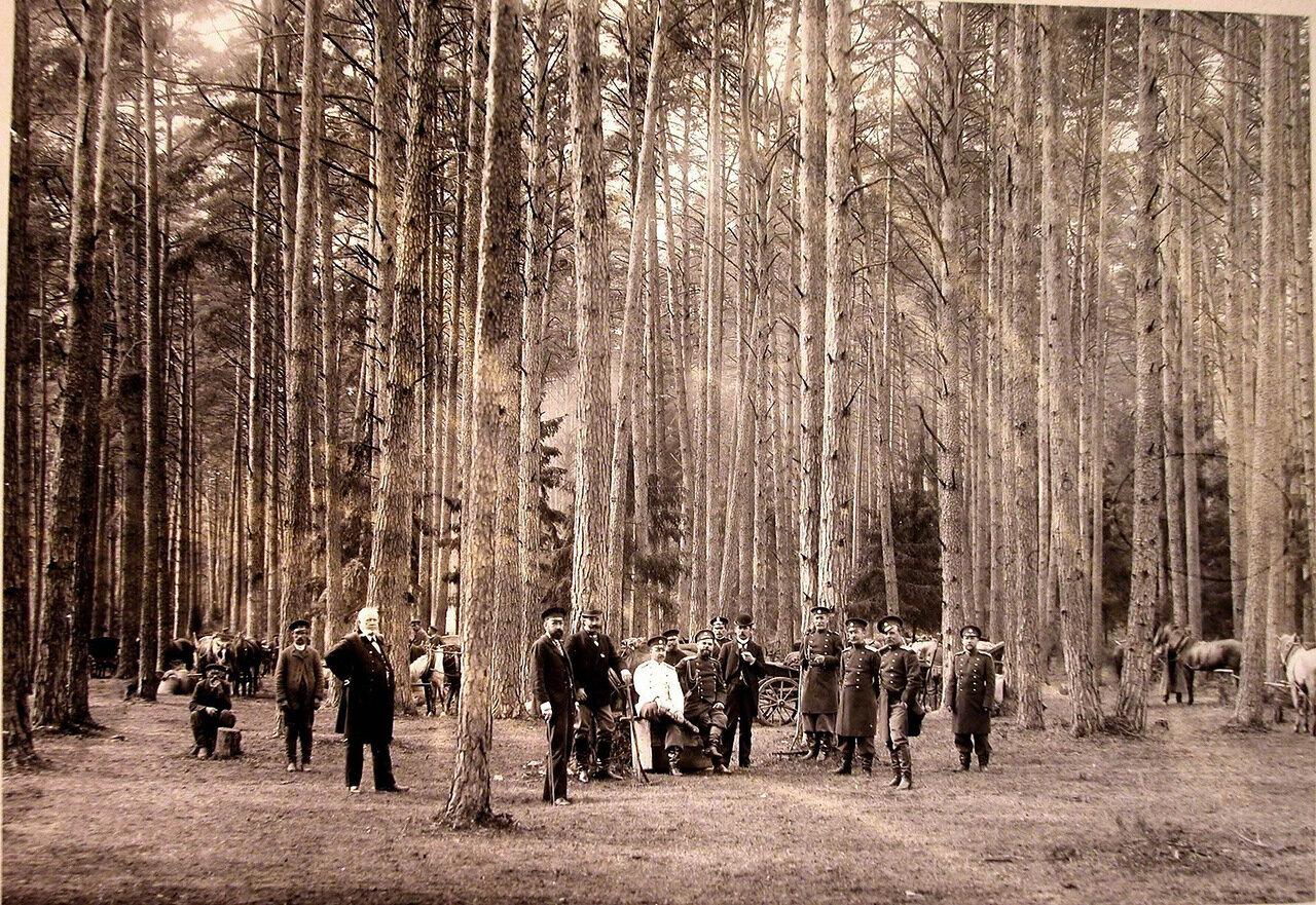 11. Группа участников охоты на опушке леса