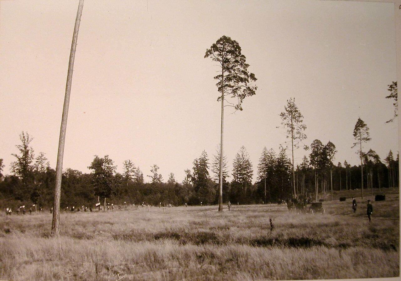 29. Охотники, егеря на опушке леса перед началом охоты