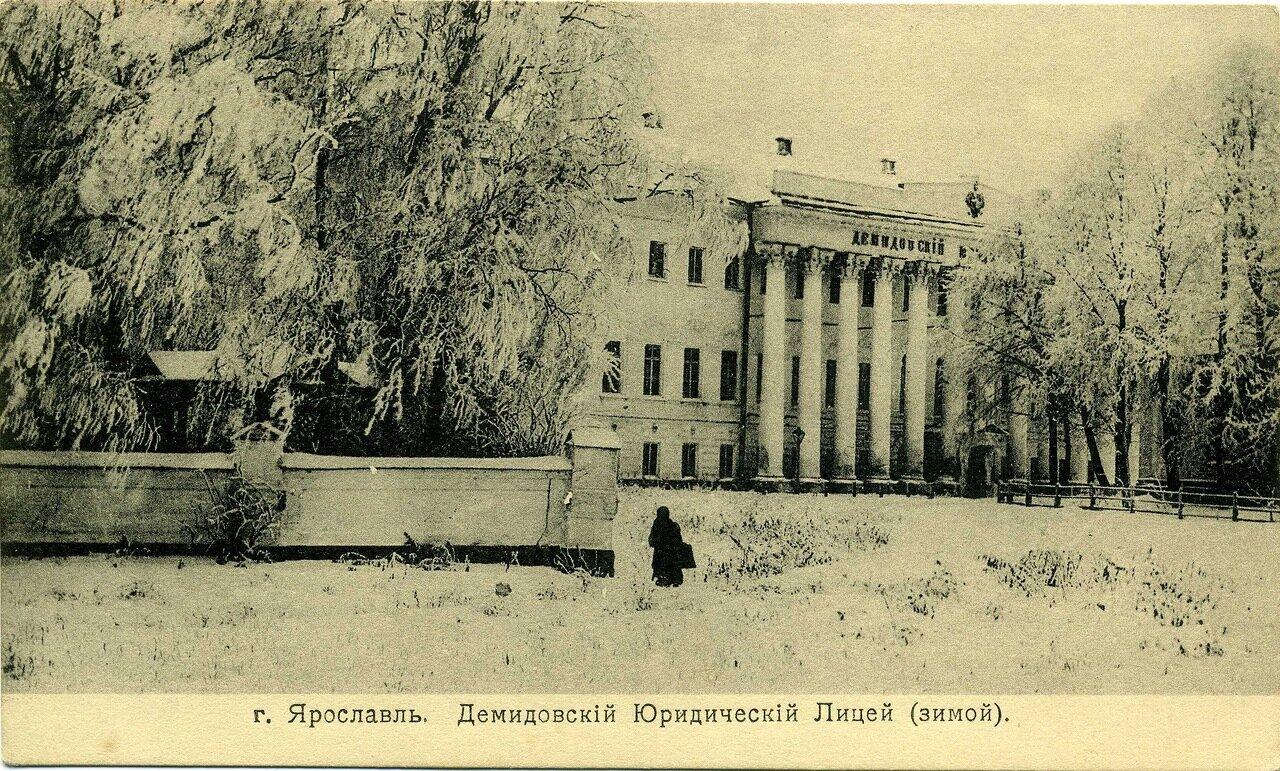 Демидовский Юридический Лицей (зимой)