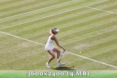 http://img-fotki.yandex.ru/get/9652/14186792.26/0_d8fc6_8d8638f1_orig.jpg