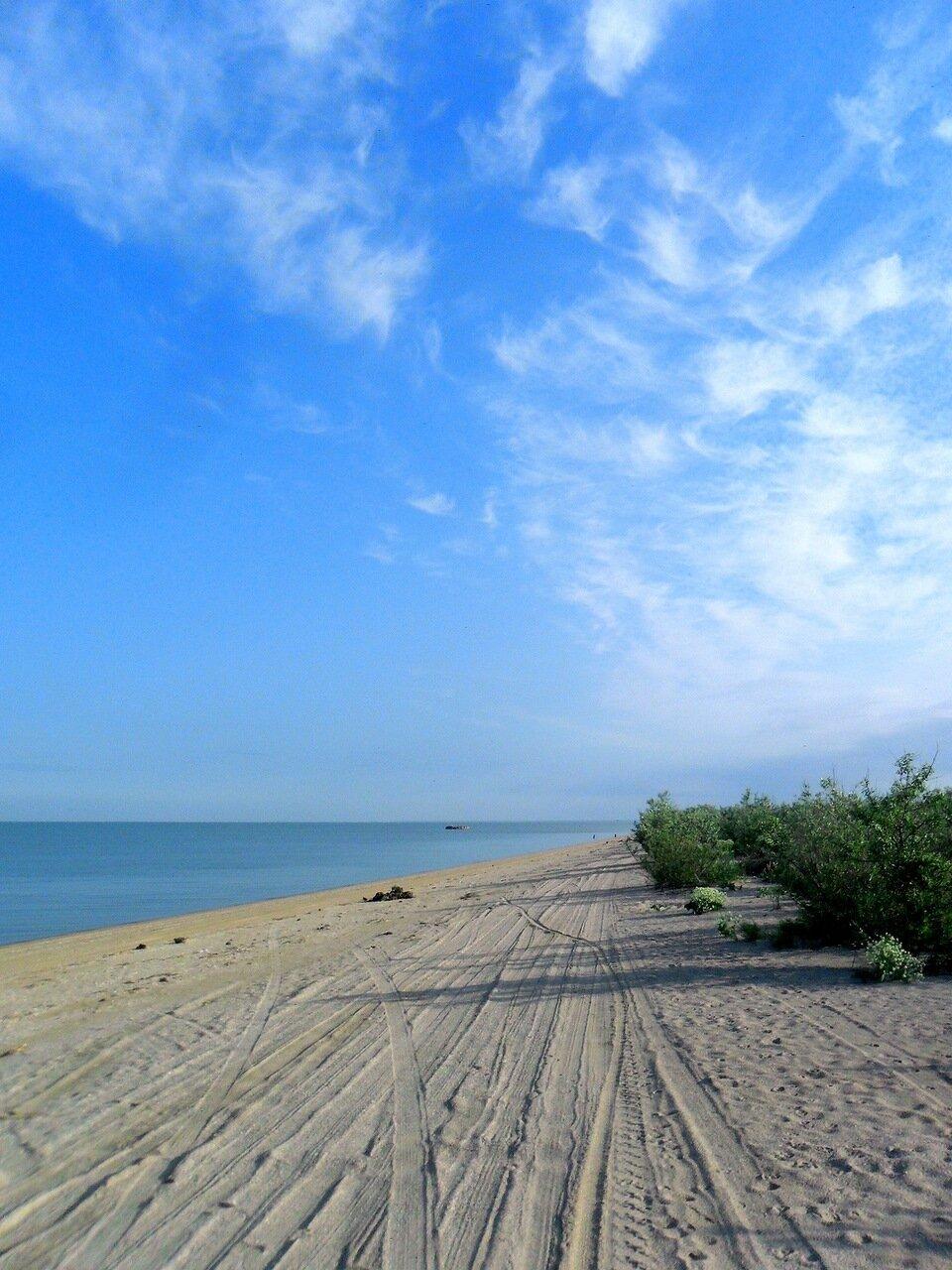 К морю на берег песчаный, май
