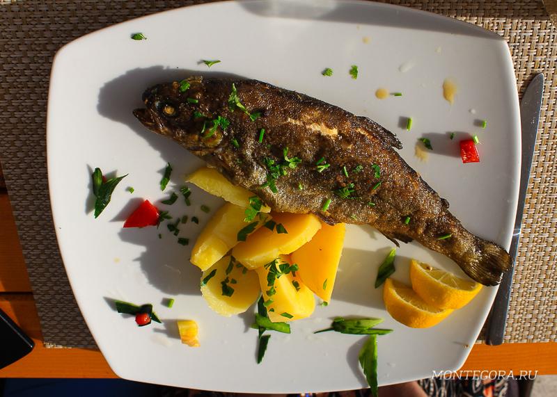 Рыба выловленная в Риеке Црноевича