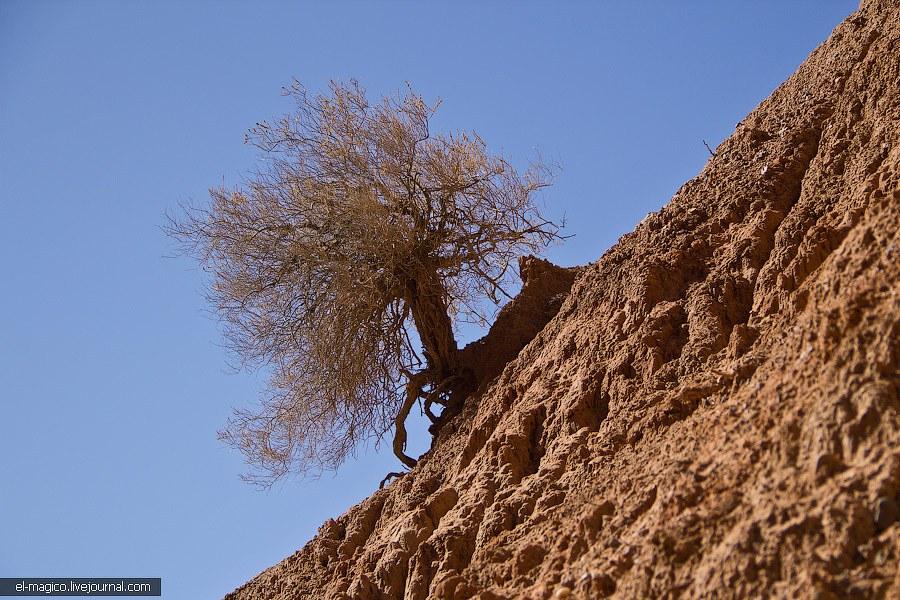 Интересен перепад температуры в каньонах — на солнце тебе жарко, в тени прилично морозит. Особенно э