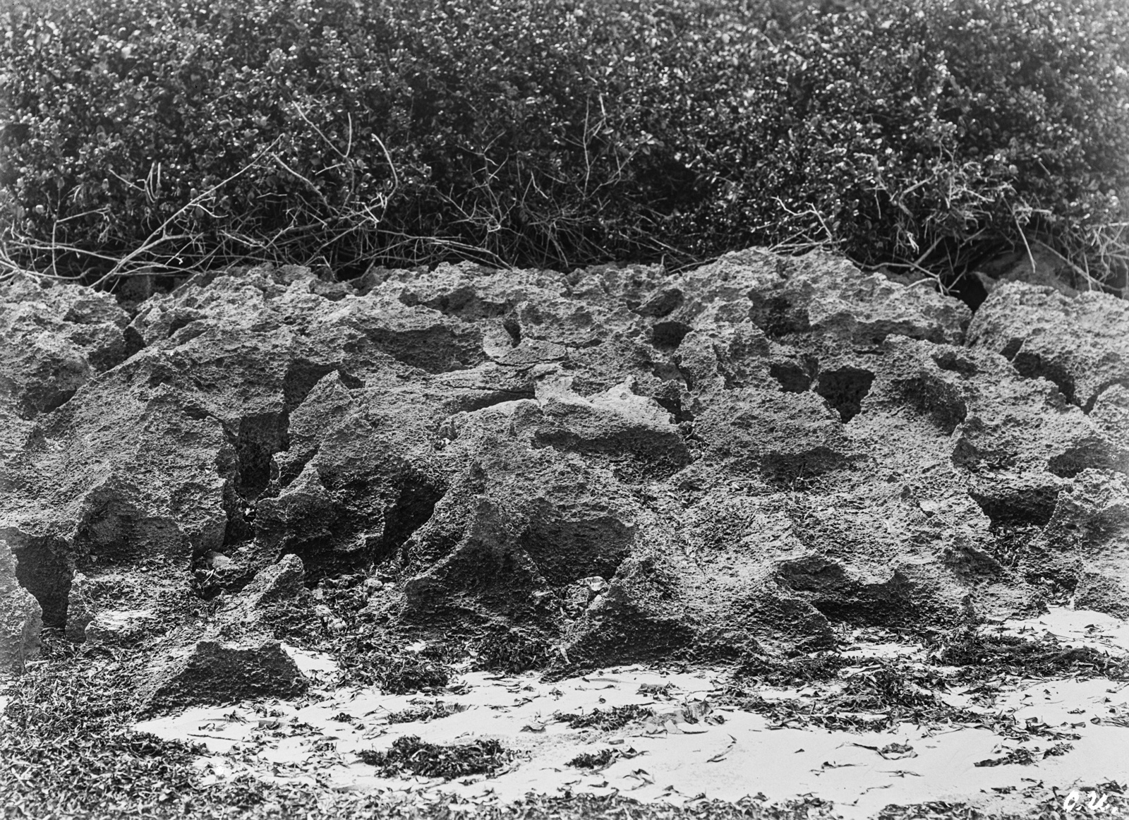 138. Скала на острове Макатумбе