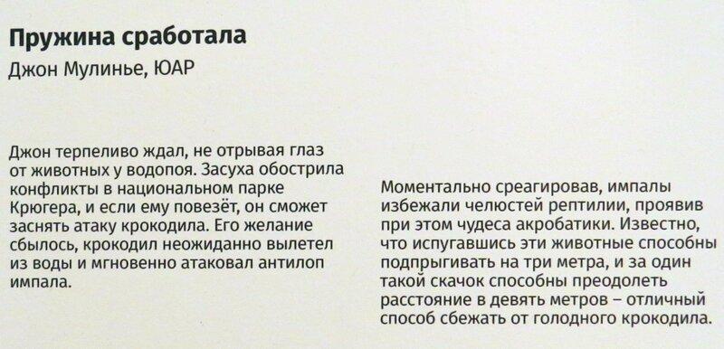 https://img-fotki.yandex.ru/get/966391/140132613.6d2/0_244691_b488ea42_XL.jpg