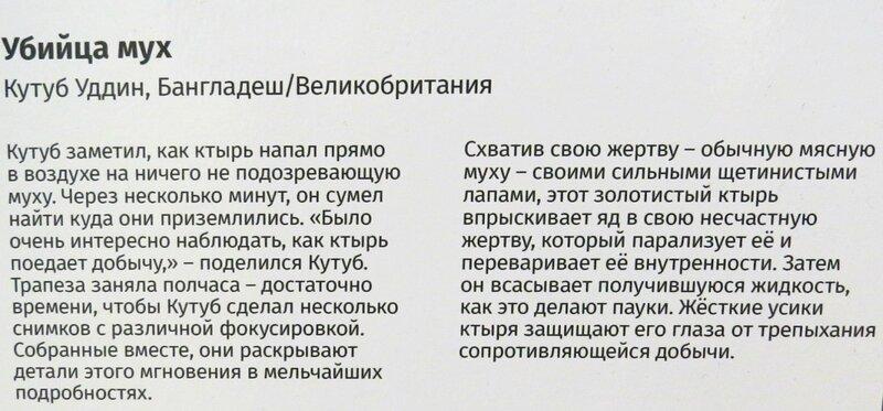 https://img-fotki.yandex.ru/get/966391/140132613.6d2/0_244695_5b7c7857_XL.jpg
