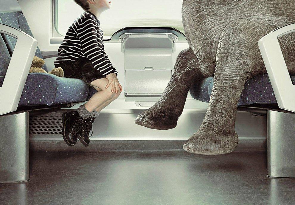 креатив реклама креативность Фотография фотограф работа бренды
