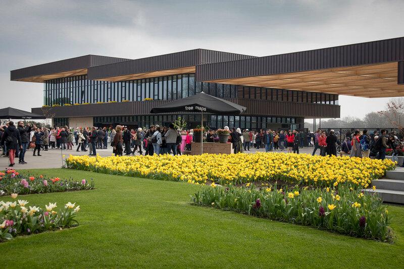 Entrance of Keukenhof. Yellow tulips